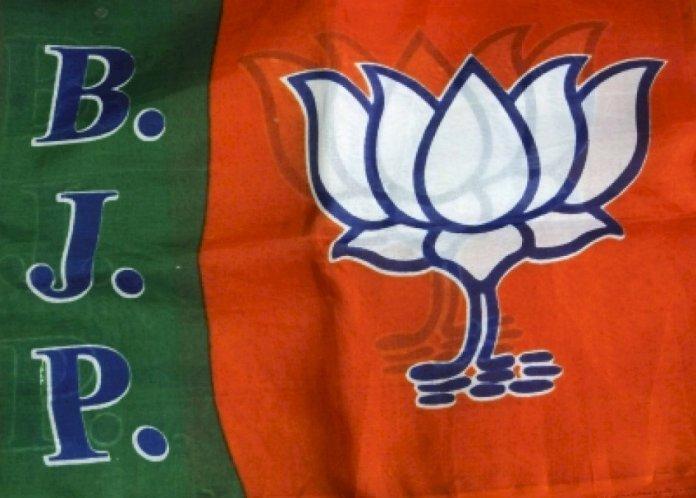 भाजपा 25 मार्च तक कर सकती है मध्यप्रदेश में सरकार बनाने का दावा