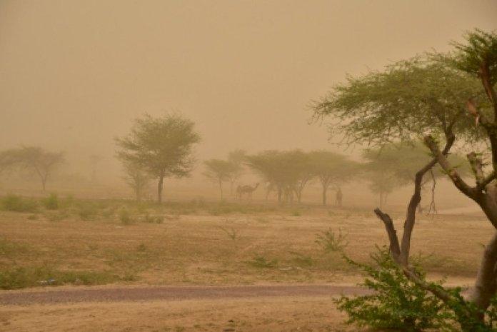 पश्चिमी विक्षोभ के चलते दिल्ली एनसीआर में धूल भरी आंधी, बारिश