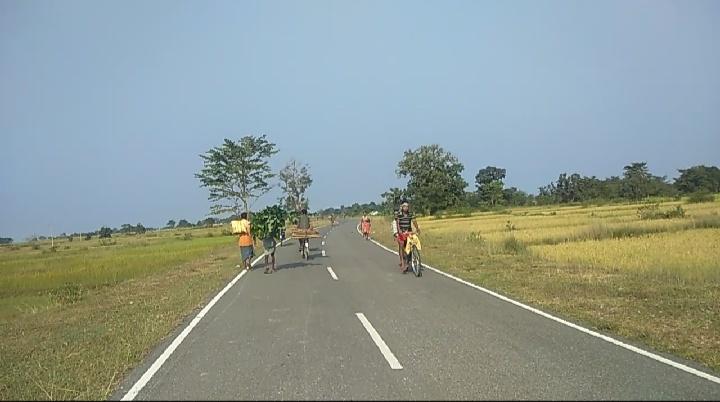 अधिकतर ग्रामीण क्षेत्रों के लोग आज भी जंगल के जलावन पर आश्रित